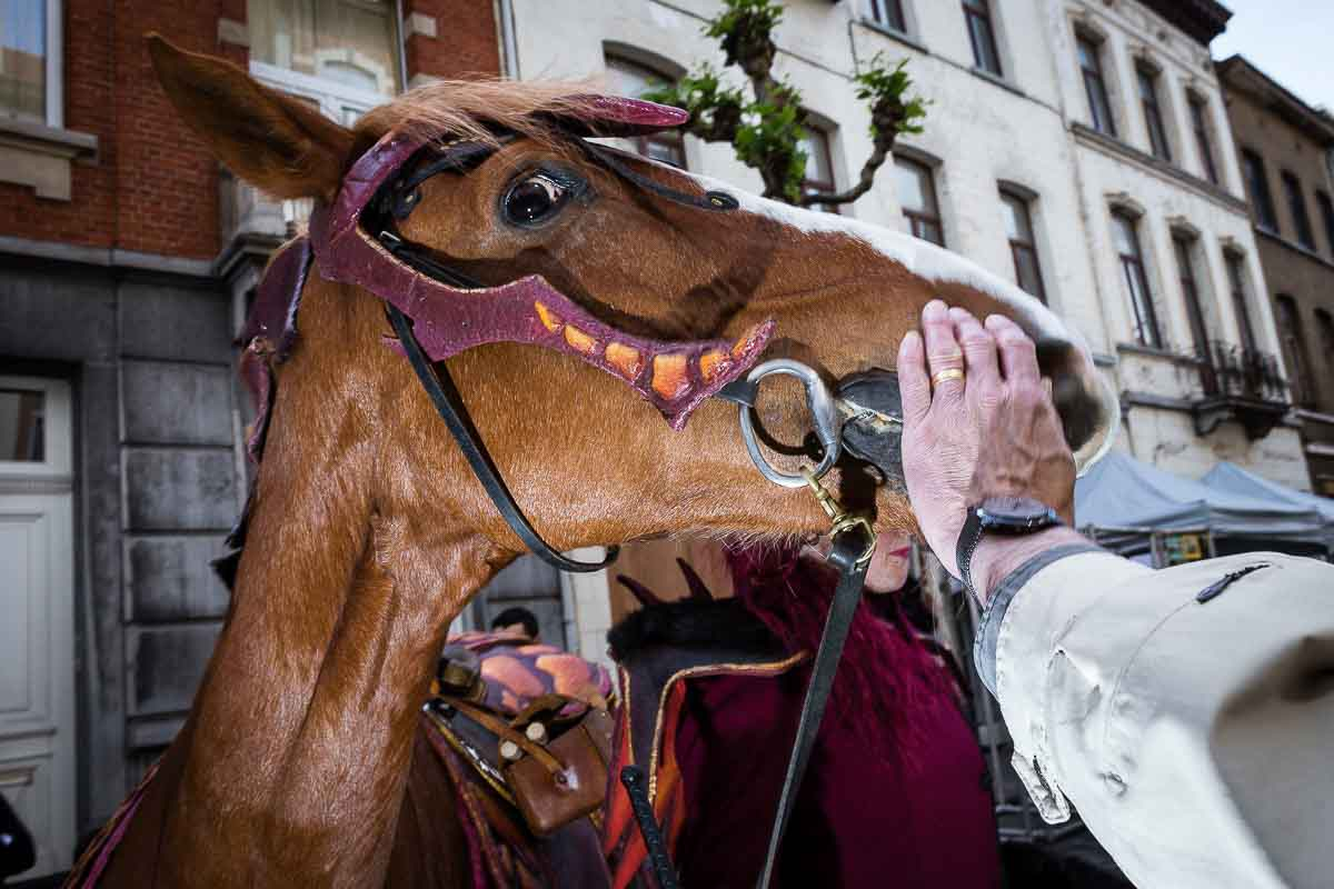 Close up flash street photograph of a hand trying to touch a horse that's moving away
