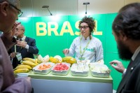 Fruit importer presenting her produce during an event for APEX Brasil