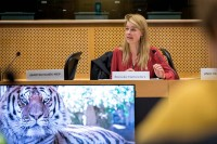 Reineke Hameleers, Director Eurogroup for Animals during the Breaking Point - Solving the European Wildlife Rescue Crisis Conference